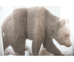 Мишень «Медведь» (1x1,5 м)