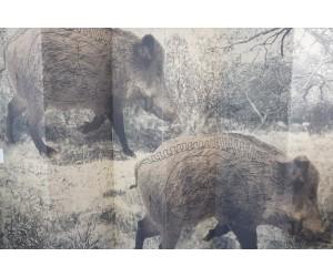 Мишень «Сеголетки» (1x1,5 м)