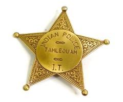 Значок Индейской полиции (пятиконечная звезда) DE-108